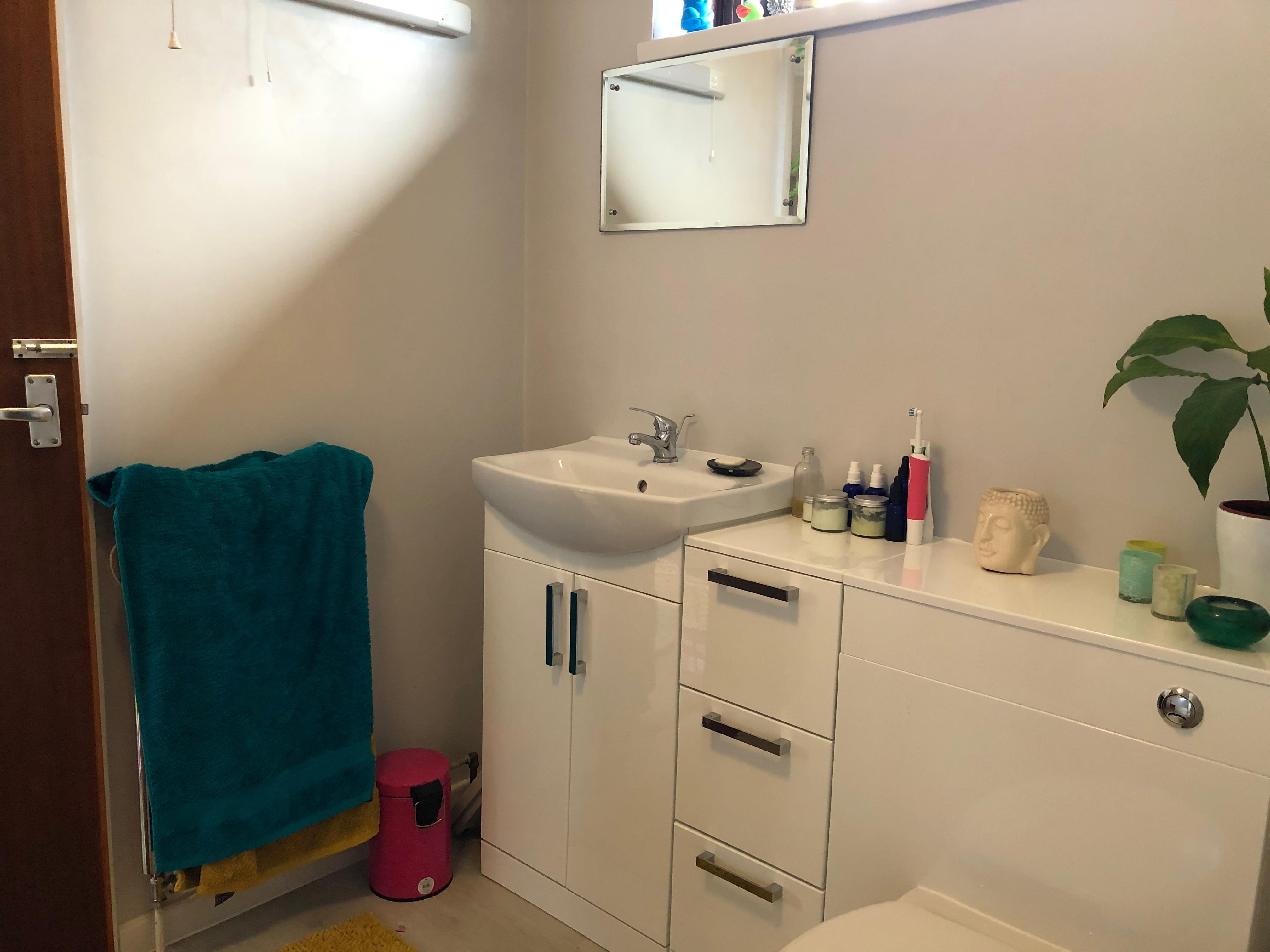 Annexe Bathroom pic a