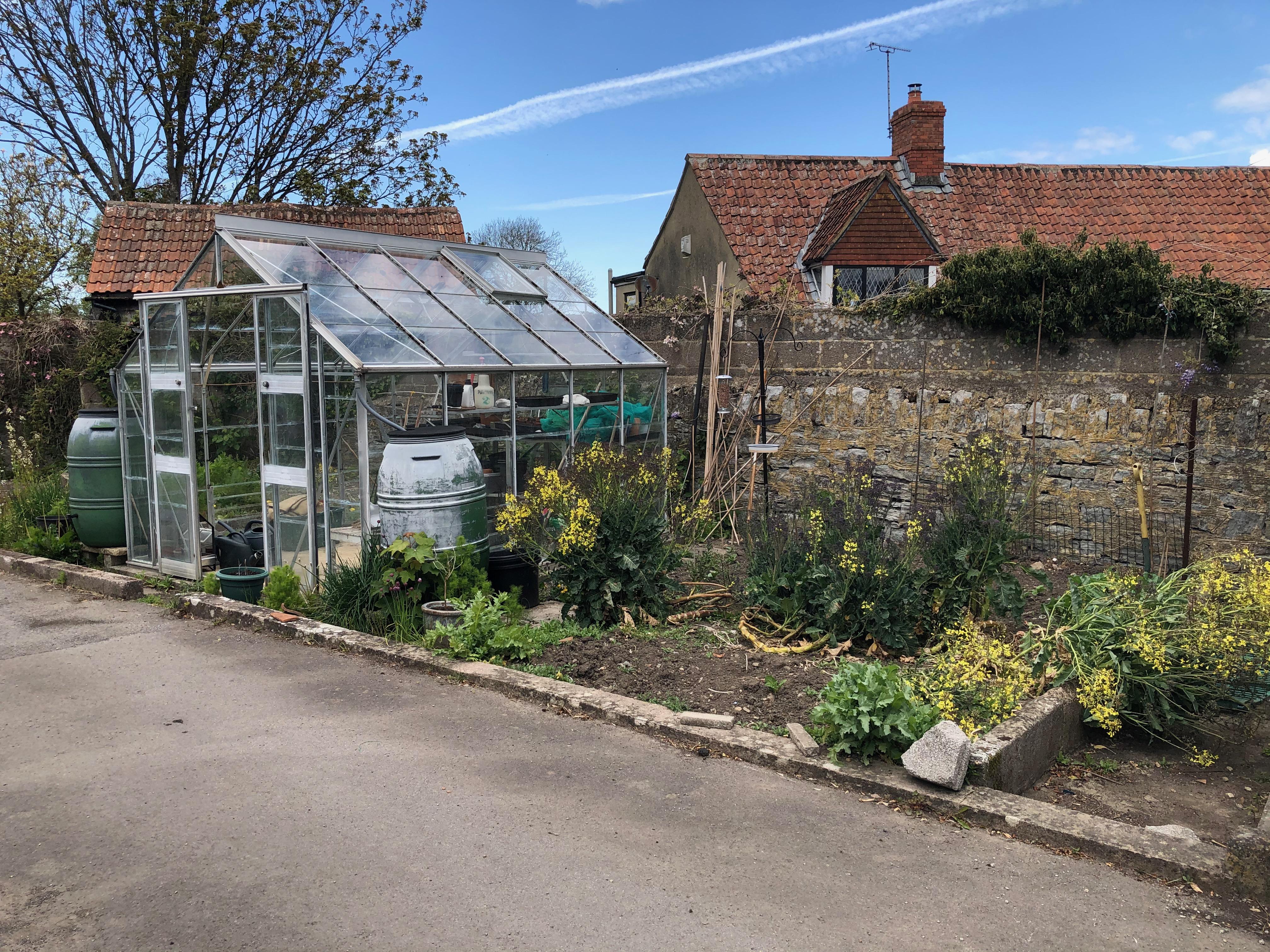 Annexe Garden area